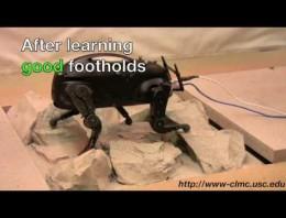 Robot LittleDog aprendiendo nuevos trucos