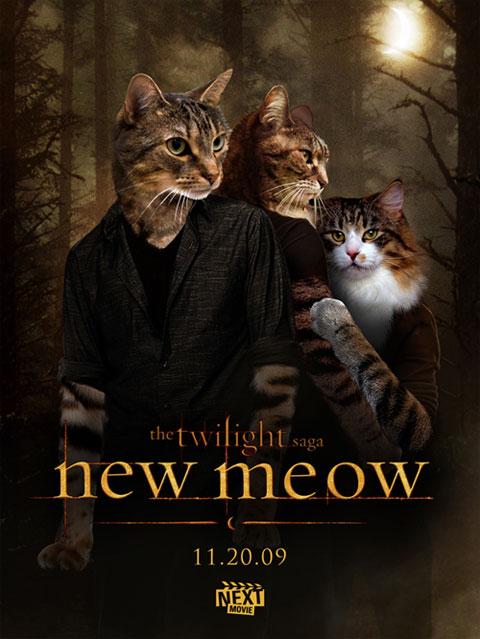 Carteles de películas con gatos como protagonistas