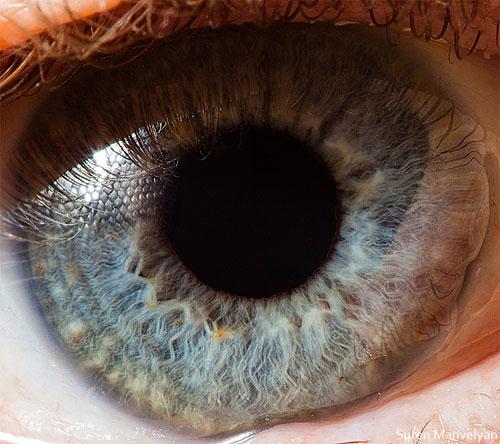 Increíbles fotos macro del ojo humano