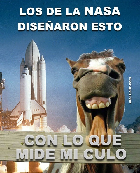El diseño del transbordador espacial dependía del culo de un caballo