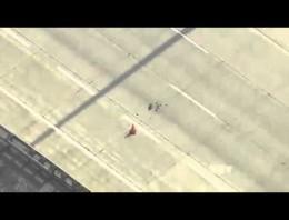 Una familia de patos intenta cruzar una autopista. ¿Lo consiguieron?
