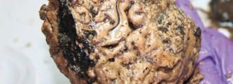 El cerebro conservado más antiguo del Reino Unido: 2600 años