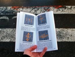 La infraestructura de Internet en Nueva York: Conócela y visítala