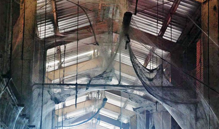 Más de 100 millones de arañas encontradas juntas en un sólo edificio [WTF]