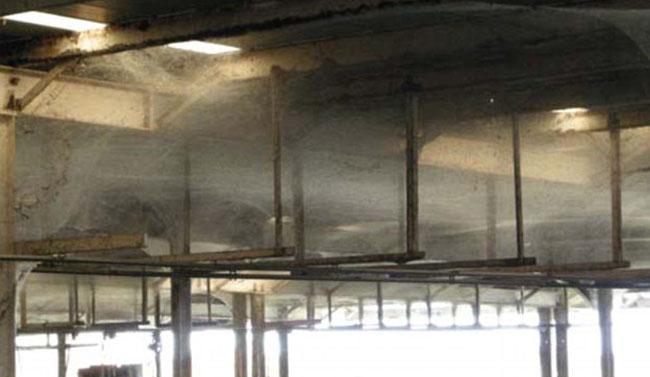 Millones de arañas en una depuradora de agua