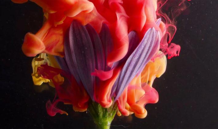 Estos increíbles efectos son sólo tinta y agua grabados a cámara lenta