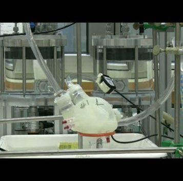 Ya se pueden imprimir corazones artificiales que funcionan como los humanos